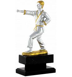 Trofeo karate